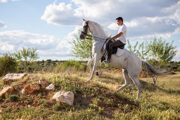 Jong mannetje in toevallige uitrusting die wit paard berijden op grasrijke weide een zonnige dag