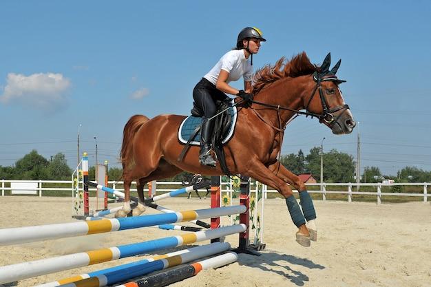 Jong meisje op haar baaipaard springt over een barrière op hippische wedstrijden.