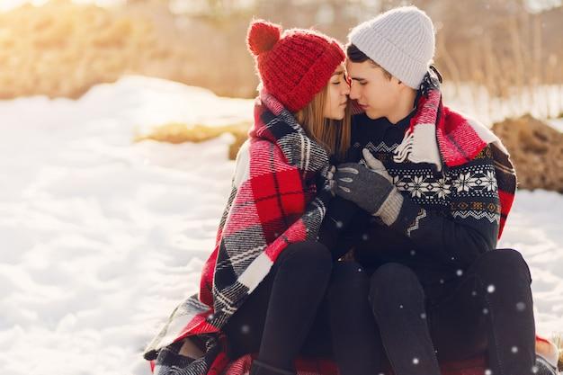 Jong paar dat deken op een sneeuwgebied draagt