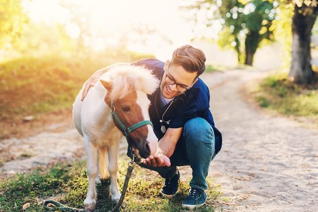 Jonge aantrekkelijke mannelijke dierenarts die schattig klein ponypaard onderzoekt en voedt.