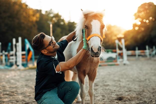 Jonge aantrekkelijke mannelijke dierenarts genieten van met schattig klein pony-paard.