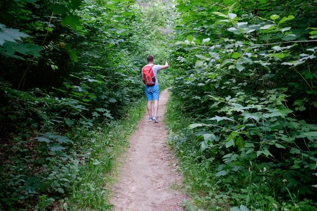 Jonge aantrekkelijke sportieve man lopen langs een pad in het bos