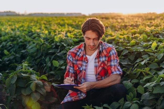 Jonge agronoom zit in maïsveld de controle over de opbrengst en schrijf een notitie
