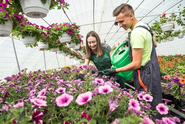 Jonge arbeiders in een kas voeden bloemen. het concept van zorg voor planten