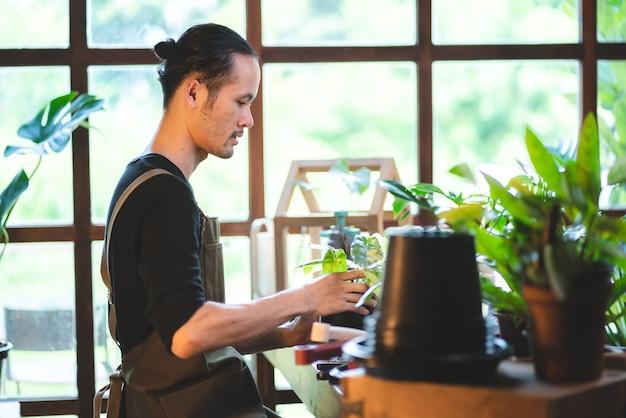Jonge aziatische man is blij met het kweken van planten in een kleine groene tuin thuis, hobbylevensstijl met groene natuur in een huis, bloemboom in pot tot botanische tuinbouw landbouwteelt