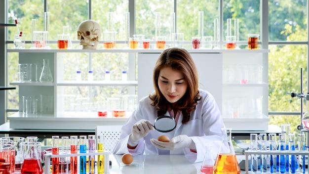 Jonge aziatische vrouwelijke wetenschapper met vergrootglas die kippenei onderzoekt terwijl ze aan het bureau werkt met kolven met kleurrijke vloeistoffen tijdens onderzoek in het laboratorium.