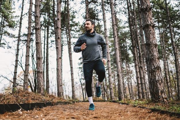 Jonge, bebaarde sportman die in bos bij herfst loopt en voor marathon voorbereidingen treft.
