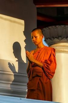 Jonge beginner die zich met handen bevindt die met een nederige geest worden gekluisterd.