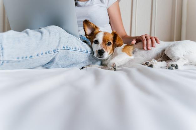 Jonge blanke vrouw op bed die op laptop werkt. leuke kleine hond die bovendien ligt.