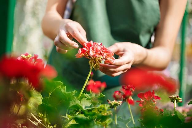 Jonge bloemist die bloemen behandelt. handen sluiten omhoog.