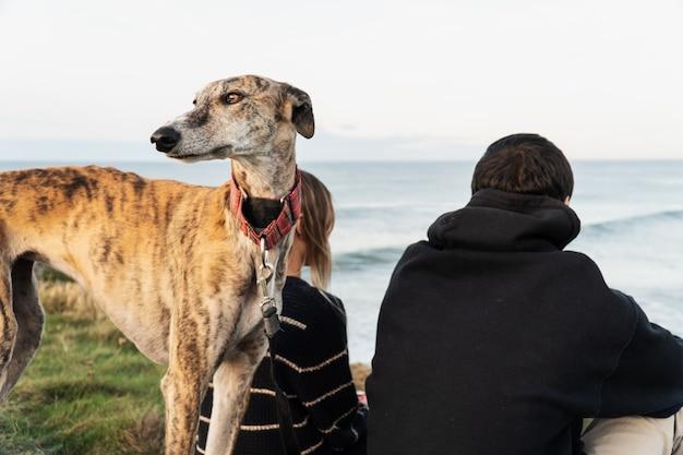 Jonge blonde vrouw en haar vriend en haar windhond op de kust