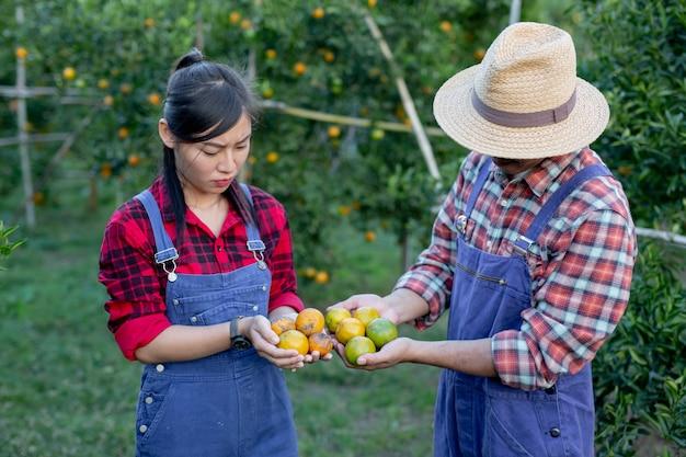 Jonge boeren verzamelen oranje