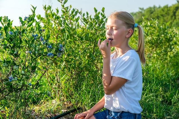 Jonge dochter van boeren oogst bosbessen van een struik en geniet van de smaak van bessen