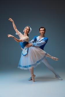 Jonge en sierlijke balletdansers als sprookjesfiguren van assepoester