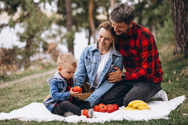 Jonge familie in park dat piscnic heeft