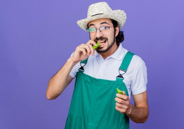 Jonge, gebaarde tuinmanmens die jumpsuit en hoed draagt die helften van groene hete spaanse peperpeper houdt die het staande over blauwe muur bijten