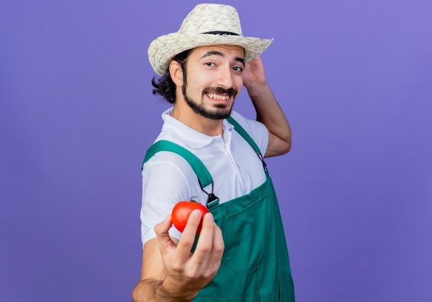 Jonge, gebaarde tuinmanmens die jumpsuit en hoed draagt die verse tomaat toont die vrolijk over blauwe muur glimlacht