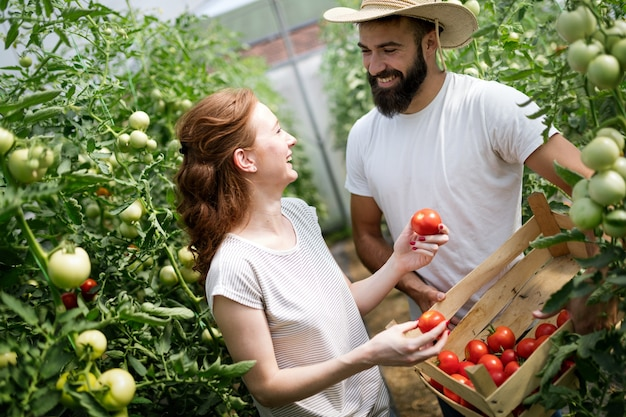 Jonge gelukkige paar boeren werken in kas