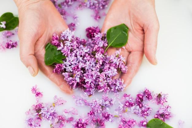 Jonge handen houden lila bloemblaadjes in een melkbad.