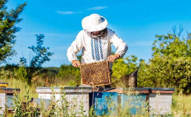 Jonge imker die in de bijenstal werkt. bijenteelt concept. imker oogsten honing