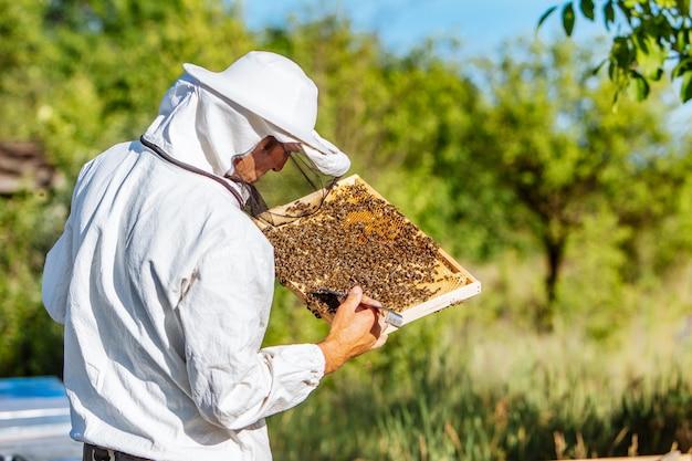 Jonge imker die in de bijenteelt werkt. imker oogst honing