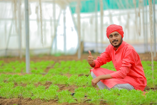 Jonge indiase boer bij kas of polyhuis