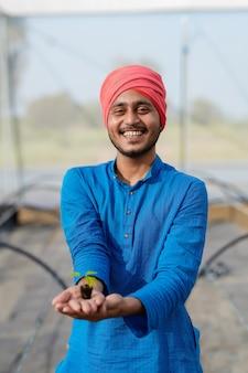 Jonge indiase boer die klein chili-gewas in de hand houdt bij groen huis