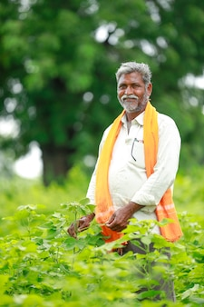 Jonge indiase boer op katoen veld, india