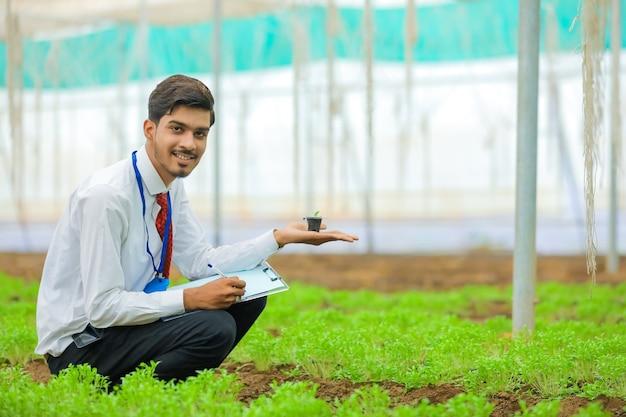 Jonge indiase landbouwingenieur die kleine plant in de hand houdt en wat informatie verzamelt in de kas