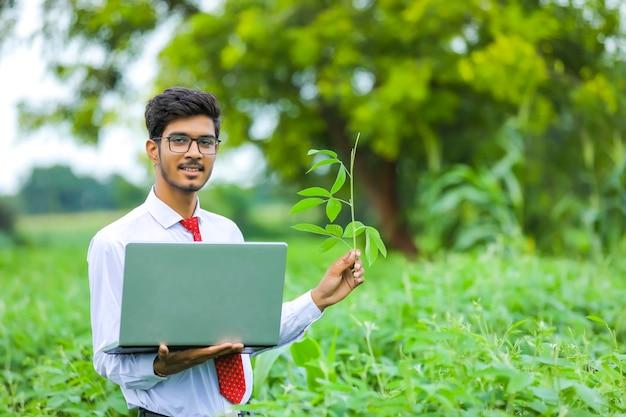 Jonge indiase landbouwingenieur met laptop op veld