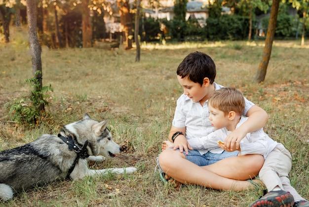 Jonge jongens liefdevol knuffelen zijn hond bij zonsondergang. diergeneeskunde