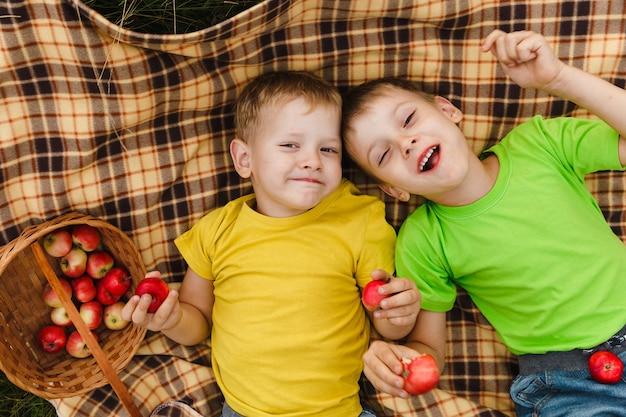 Jonge kindjongens die pret hebben bij het plukken van appels. broers die verse organische sappige appelen in handen houden.
