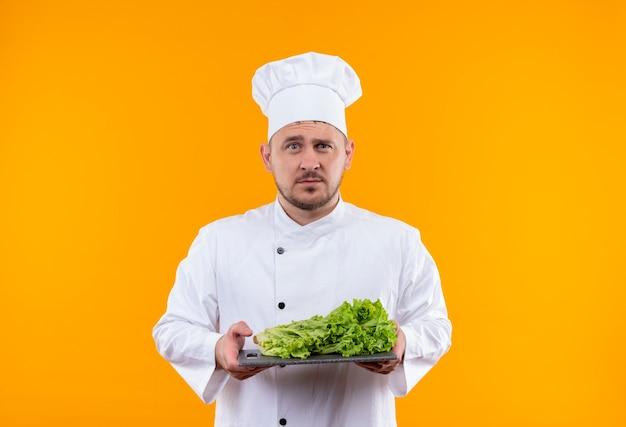 Jonge knappe kok in chef-kok uniforme bedrijf snijplank met sla erop op zoek geïsoleerd op oranje ruimte