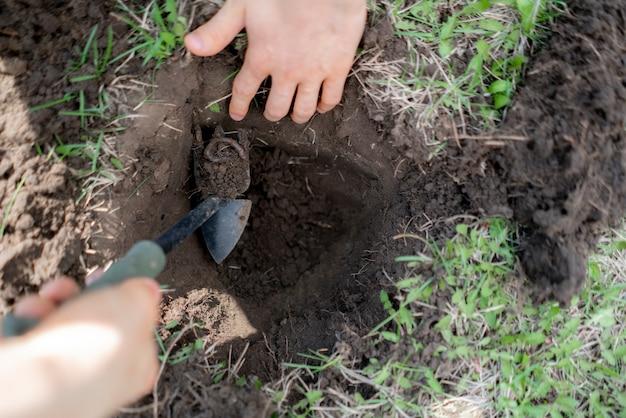 Jonge man houdt bos van bodem met aarde wormen
