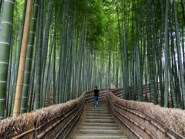 Jonge man lopen door een rustige bamboebos