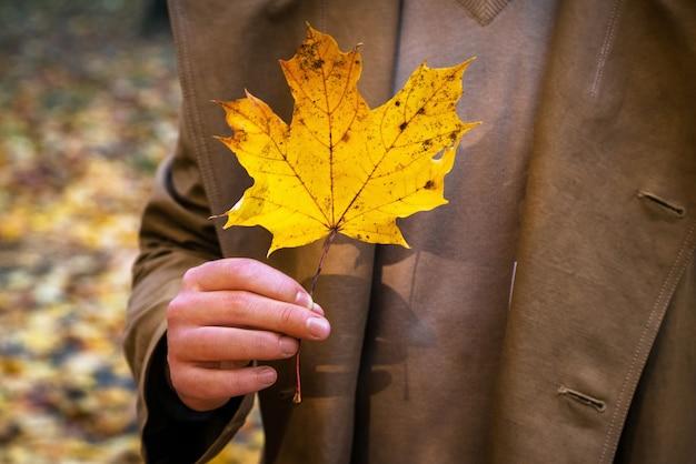 Jonge man met geel esdoornblad in de herfst gebladerte oppervlak