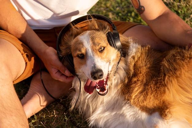 Jonge man met hond aan zee met koptelefoon