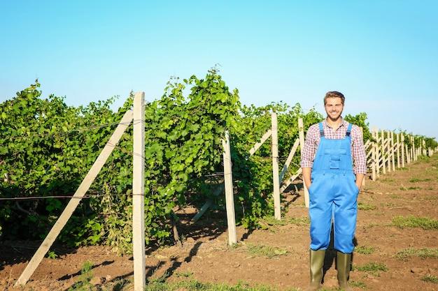 Jonge mannelijke boer die in de wijngaard staat