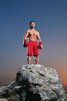 Jonge mannelijke bokser die bokshandschoenen draagt die zich bovenop een rots bevinden