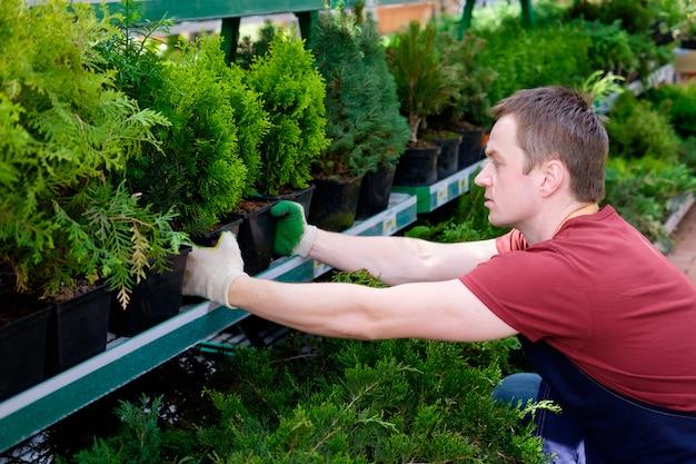 Jonge mensenverkoper in de serre van de installatiemarkt op het werk, bloemist