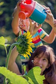 Jonge moeder houdt haar peuter op de schouders terwijl hij een prachtige bloeiende zonnebloem water geeft met een speelgoedgieter. conceptueel beeld van leven, zuiverheid en verbinding met de natuur, focus op de bloem.