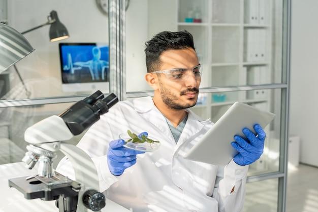 Jonge peinzende onderzoeker in handschoenen en bril die door online gegevens in tablet kijkt terwijl hij een monster van groene in het laboratorium gekweekte spruit bestudeert