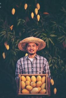 Jonge slimme boer, moderen mango-boerderij