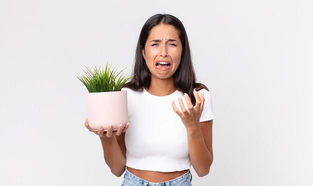 Jonge spaanse vrouw die er wanhopig, gefrustreerd en gestrest uitziet en een decoratieve kamerplant vasthoudt