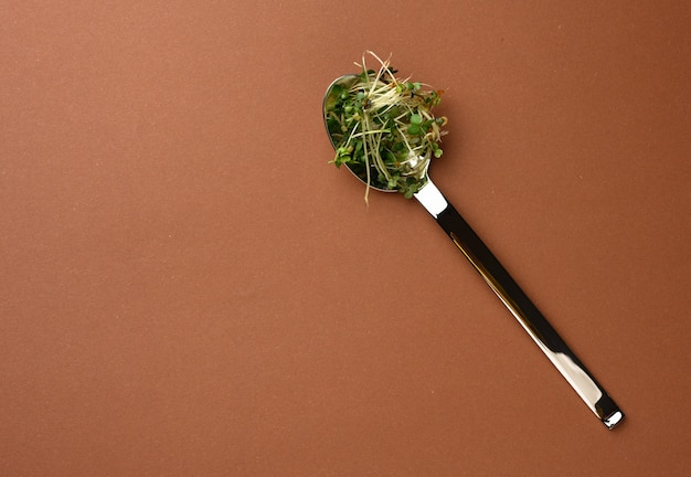 Jonge spruiten van microgreen in een metalen lepel op een bruine achtergrond, bovenaanzicht