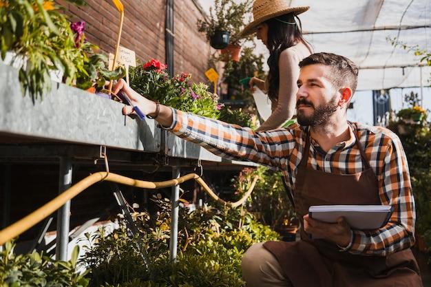 Jonge tuinlieden die installaties bespuiten en aantekeningen maken