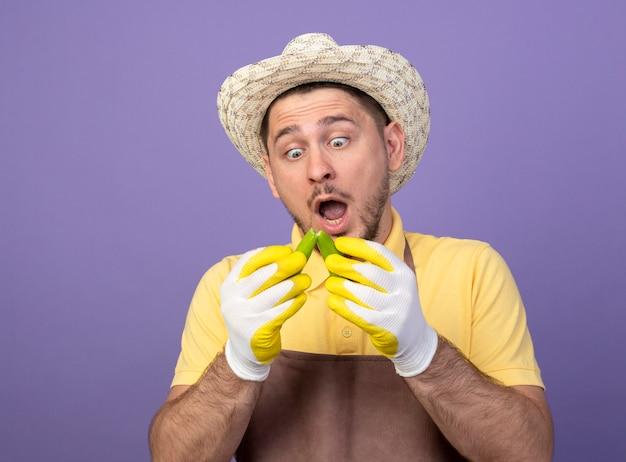 Jonge tuinman die jumpsuit en hoed in werkhandschoenen draagt die gebroken groene chilipeper houdt die ernaar kijkt verrast en verbaasd staande over de paarse muur