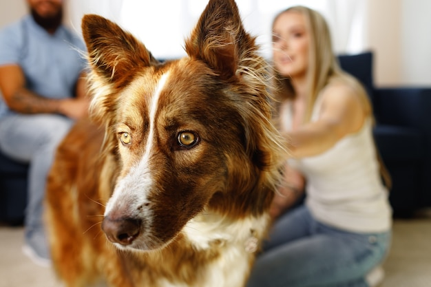 Jonge verliefde paar ontspannen in de woonkamer met hun hond huisdier