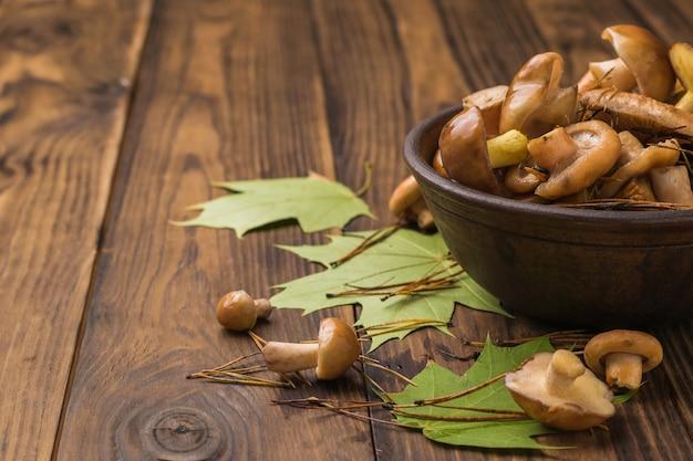 Jonge verse bospaddestoelen in een diepe kom op een houten tafel.