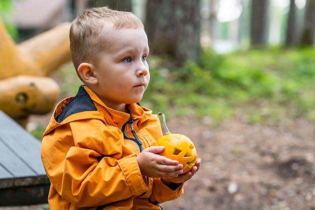 Jonge verward jongen die kleine gesneden pompoen houdt